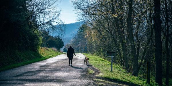 Blogs - Chiropractor in Gastonia North Carolina